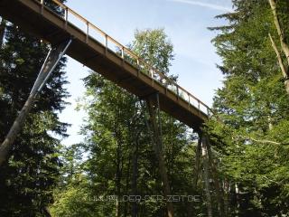 baumwipfelweg-nationalpark-bayerischer-wald-4
