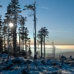 winterliche Dreisesselregion