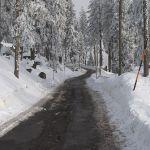 dreisessel-winter-2008-09-2