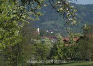 Lalling - von Euschertsfurth aus gesehen